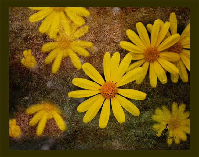Daisy Old World Paper