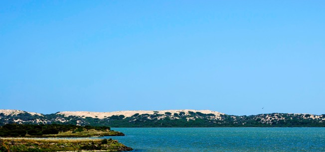 long-point-coorong